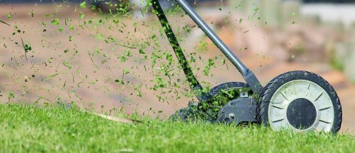 a push lawn mower sprays grass behind as it mows a lawn