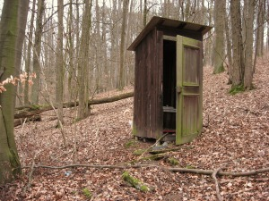 wooden outhouse in the woods